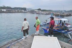 Os porteiros estão carregando o atum de seus barcos no porto Fotos de Stock Royalty Free