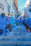 Os potenciômetros de flor coloridos, na entrada e nas escadas de um azul pintaram a casa tradicional, Índia Fotos de Stock Royalty Free