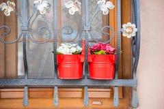Os potenciômetros de flor estão em uma janela com barras de ferro imagem de stock