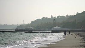 Os povos alimentam as gaivotas em uma praia abandonada do mar video estoque