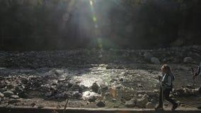 Os povos andam ao longo da ponte de log caída sobre o rio cursos da família Ambiente dos povos por montanhas, rios, córregos vídeos de arquivo