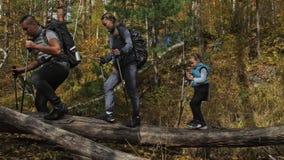 Os povos andam ao longo da ponte de log caída sobre o rio cursos da família Ambiente dos povos por montanhas, rios, córregos video estoque
