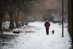 Os povos andam ao longo dos trajetos na queda de neve fotografia de stock