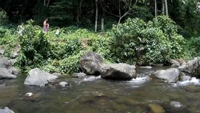 Os povos andam nos bancos do rio rochoso frio e limpo da água natural, repletos com vegetação natural vídeos de arquivo