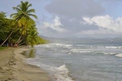 Os povos andam sobre o La Diamond Beach o 31 de dezembro de 2016, ilha de Martinica, menos Imagens de Stock