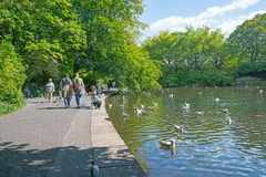 Os povos apreciam andar em torno da lagoa quando as crianças alimentarem patos imagem de stock royalty free