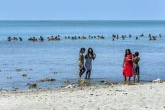 Os povos apreciam relaxar na praia do Casuarina na região de Jaffna de Sri Lanka do norte imagem de stock royalty free