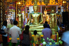 Os povos budistas tailandeses são Buda dourada adorada em Wat Pan Imagem de Stock