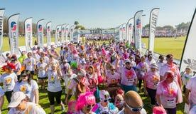 Os povos diversos que correm na cor correm a maratona em Joanesburgo imagem de stock royalty free