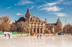 Os povos estão patinando na frente do castelo de Vajdahunyad em Budapest Imagem de Stock Royalty Free