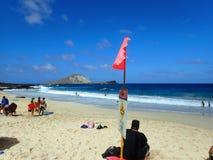Os povos jogam na praia com sinal da corrente forte na praia Fotos de Stock Royalty Free