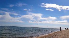 Os povos no litoral, gaivota voam sobre a praia, gaivota voam sobre a praia em um movimento lento filme