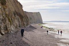 Os povos que andam no d'Opale da costa costeiam com os penhascos brancos perto de Audresselles, França Fotos de Stock