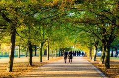 Os povos que andam sob um trajeto treelined em Greenwich estacionam foto de stock royalty free