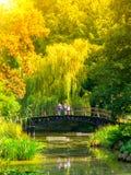 Os povos que estão na ponte de madeira pequena sobre o parque pond nas hortaliças luxúrias do jardim botânico Foto de Stock
