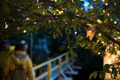 Os povos que relaxam em um special que refrigera a área natural decoraram a sagacidade Imagem de Stock Royalty Free