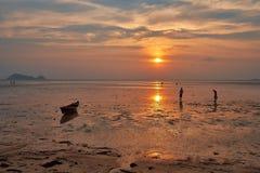 Os povos recolhem shell após o 'maré baixa' no oceano Fotografia de Stock