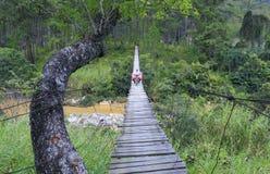 Os povos trazem lá o produto através da ponte perigosa Fotografia de Stock Royalty Free