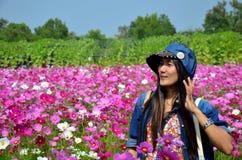 Os povos viajam e retrato no campo de flores do cosmos de Jim Thomps Imagem de Stock