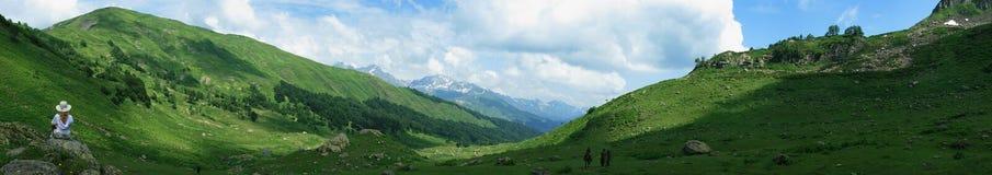 Os prados alpinos Foto de Stock