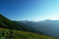 Os prados e as montanhas alpinos no azul da névoa com verão bonito ajardinam Imagem de Stock