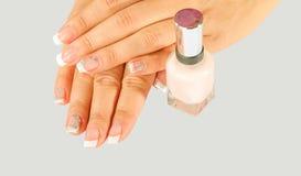Os pregos da mulher bonita com tratamento de mãos francês bonito Fotos de Stock