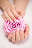 Os pregos da mulher bonita com tratamento de mãos francês e aumentaram Imagem de Stock Royalty Free