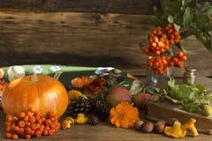 Os presentes do outono fecham-se acima Fotografia de Stock Royalty Free