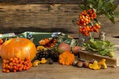 Os presentes do outono fecham-se acima Fotos de Stock