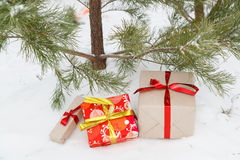 Os presentes do ` s do ano novo encontram-se sob um abeto Imagens de Stock Royalty Free