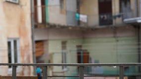 Os primeiros sinais da mola gotas em fevereiro filme