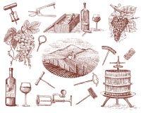 Os produtos da colheita do vinho, imprensa, uvas, vinhedos corkscrews garrafas de vidros no estilo do vintage, mão gravada tirada Fotos de Stock Royalty Free