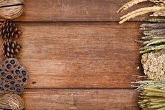 Os produtos processados de natural secam Imagens de Stock