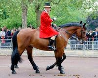 Os protetores da rainha Imagem de Stock Royalty Free