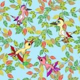Os pássaros pequenos cantam canções. Textura sem emenda. Fotos de Stock Royalty Free