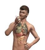 Os pulmões do fumador ilustração do vetor