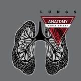 Os pulmões entregam tirado ilustração stock