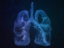 Os pulmões humanos da imagem abstrata no formulário das linhas Imagem de Stock