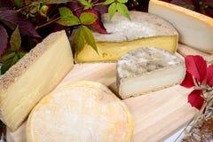 Os queijos franceses diferentes produziram nas montanhas dos cumes Fotos de Stock Royalty Free