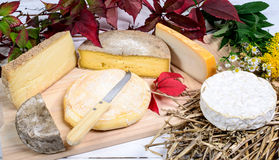 Os queijos franceses diferentes produziram nas montanhas dos cumes Imagem de Stock
