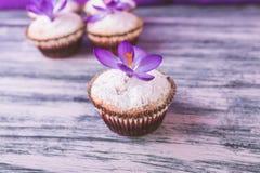 Os queques decorados com açafrão florescem no fundo preto de veludo Fotografia de Stock