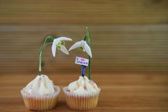 Os queques deliciosos da baunilha cobriram com as flores frescas do snowdrop e uma estatueta diminuta da pessoa com sinal da prim foto de stock