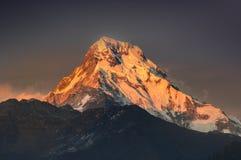 Os raios do nascer do sol fazem a montanha do Fishtail brilhar na luz dourada fotos de stock royalty free