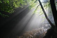Os raios do ` s do sol iluminam o desfiladeiro escuro Fotos de Stock