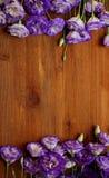 Os ramalhetes do eustoma roxo florescem na tabela de madeira Fotos de Stock