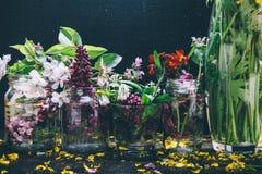 Os ramalhetes pitorescos da mola colorida florescem nas garrafas de vidro dos vasos que estão em seguido em uma tabela de madeira Imagem de Stock