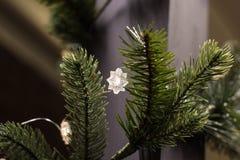 Os ramos de árvore verdes do Natal decorados com festão macia iluminam-se Fotografia de Stock Royalty Free