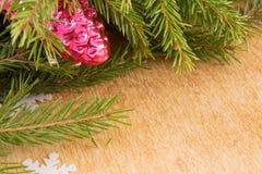 Os ramos de árvores de Natal e de decorações fallal do cone no fundo de placas de madeira Imagem de Stock