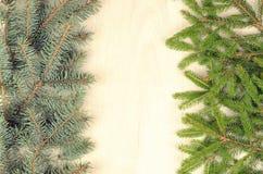 Os ramos de duas variedades enfeitam-se em um fundo de madeira Fotos de Stock