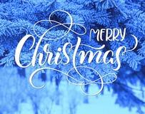 Os ramos de pinheiro cobertos de neve fecham-se acima com Feliz Natal do texto Rotulação da caligrafia Foto de Stock